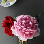Bloomin' Good:  Peonies, Bathroom Deadlines and Redesigns…