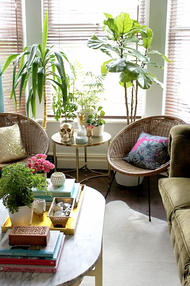 On the look out for a fiddle leaf fig tree to add to your home? I'm sharing my new found UK source!