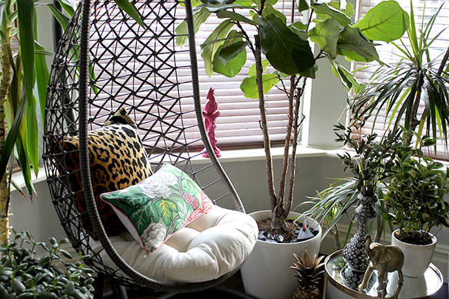 Jungle Trend - hanging chair, plants