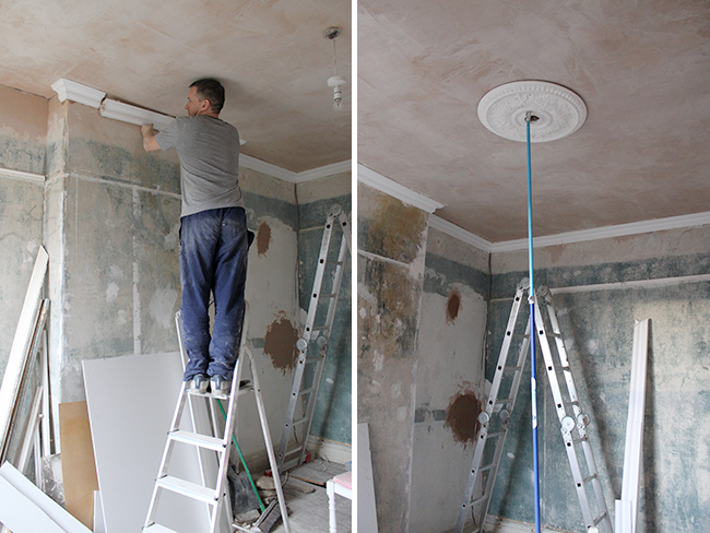 putting up cornicing and ceiling rose