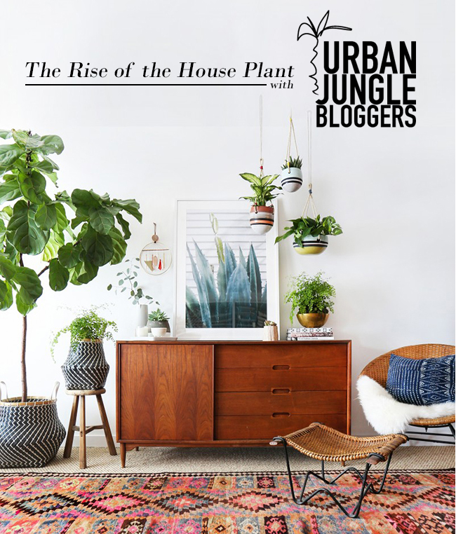 The Rise of the Houseplant with UJB logo