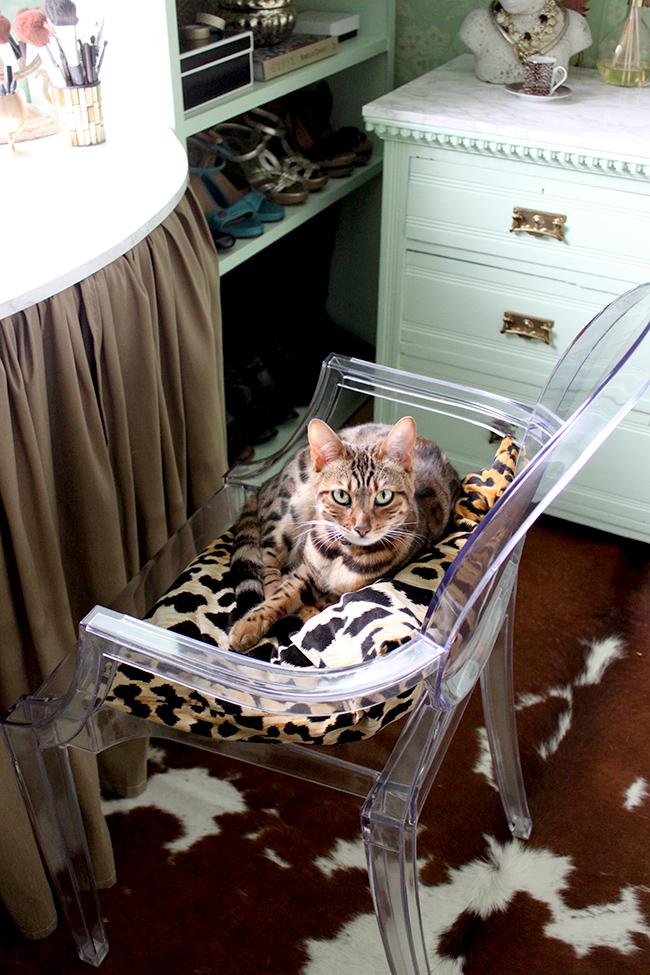 bengal cat leopard print cushion dressing room