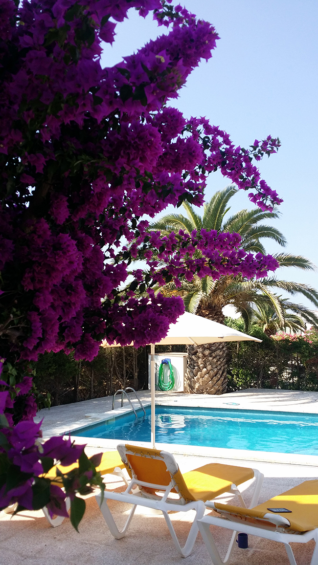 Bougainvillea and pool in Menorca villa