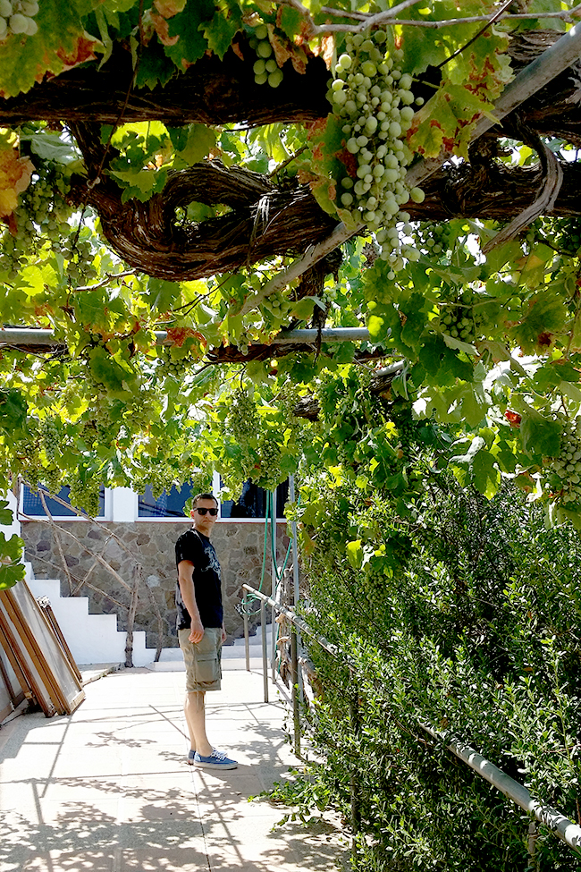 Moli d'es Raco - The Windmill Restaurant Menorca 2