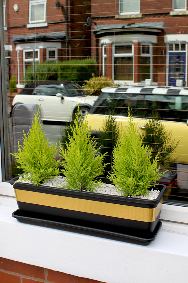 gold tape black window box - Swoon Worthy