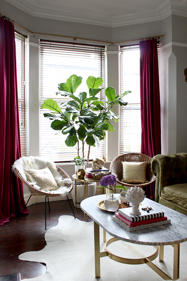 Fiddle Leaf Fig Swoon Worthy living room