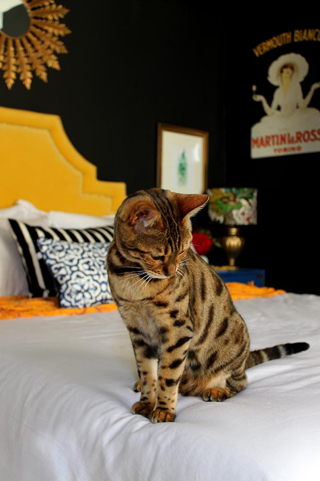 Meisha in bedroom