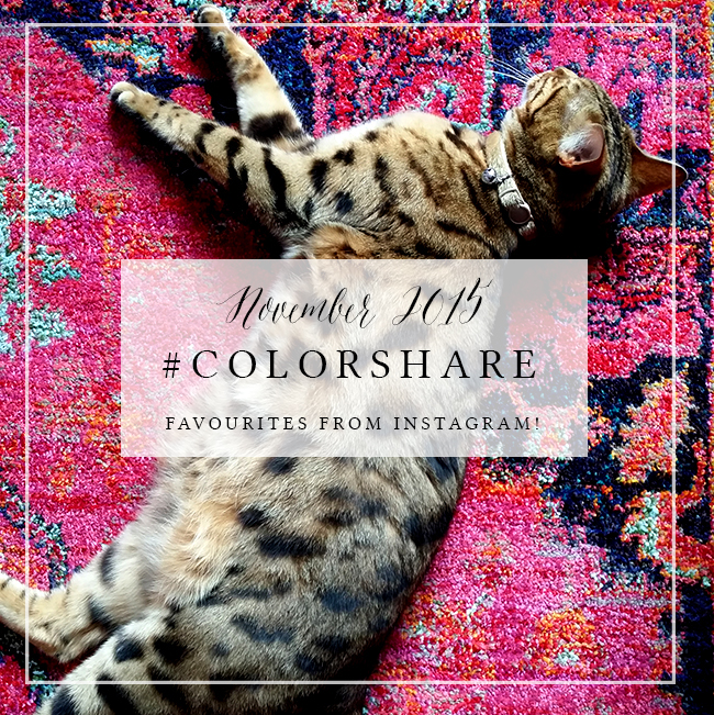 My Favourites on Instagram: #ColorShare Nov 2015