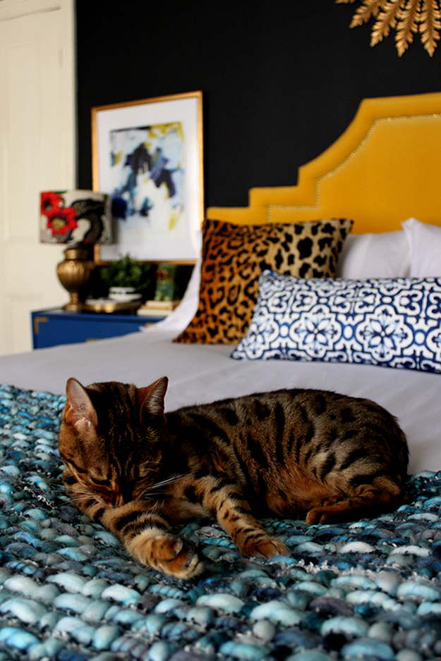 How Good Design Can Make You Sleep Better - black bedroom with cat on bed - www.swoonworthy.co.uk