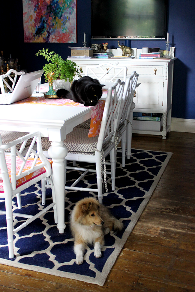 Swoon Worthy dark blue dining room with puppy and cat