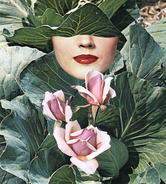 Beth Hoeckel Seasonal collage print via Swoon Worthy