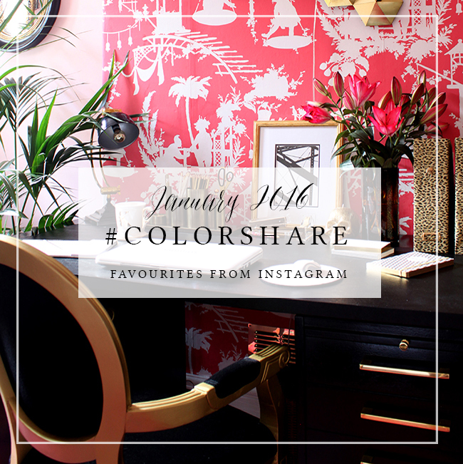 Colorshare Instagram Jan 2016
