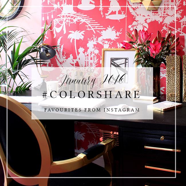 Colorshare Instagram Jan 2016