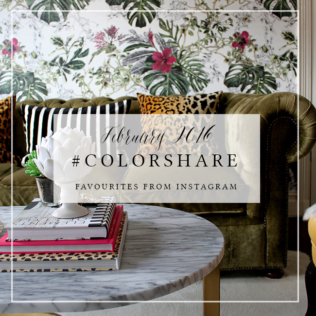 My Favourites on Instagram: #Colorshare Feb 2016