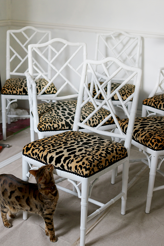 Bengal cat and leopard print jamil natural fabric faux bamboo chippendale chairs - see more at www.swoonworthy.co.uk