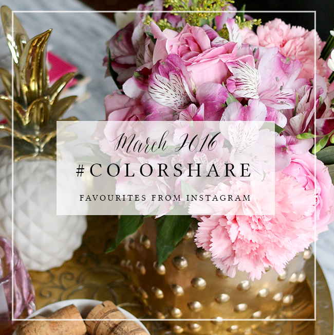 Colorshare Instagram Mar 2016