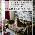 9 Things I Learned to Keep My Home From Going to the Dogs*