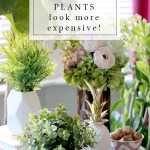 VIDEO: How to Make Cheap Faux Plants Look More Expensive