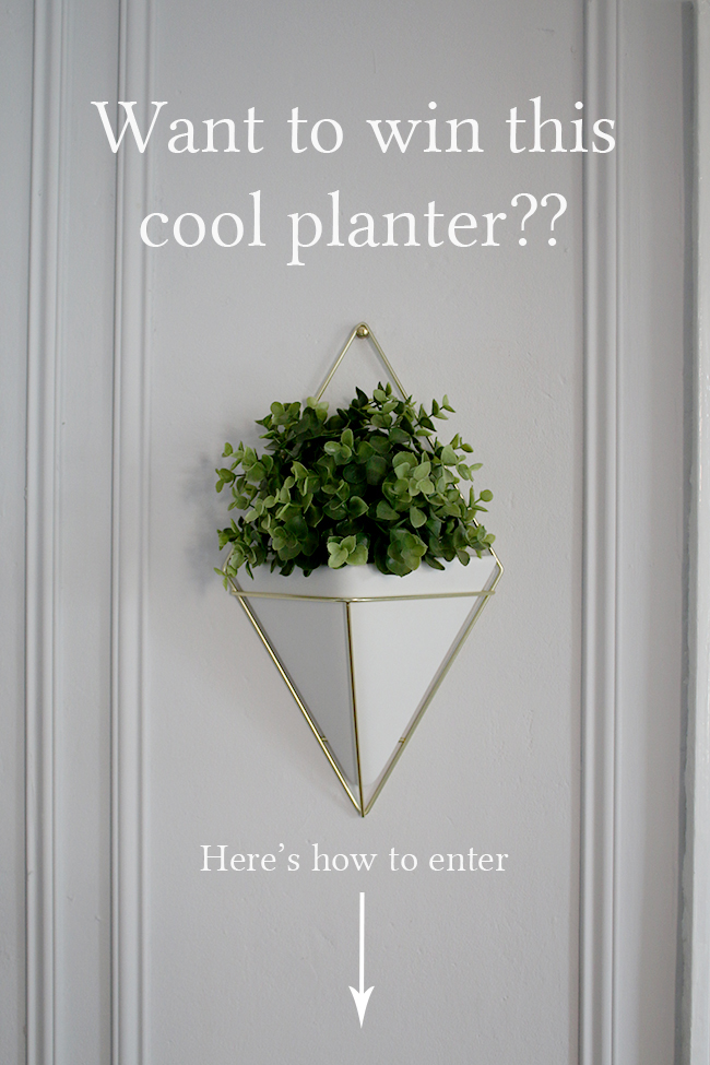 Urban Outfitters Hanging Wall Planter