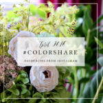 My Favourites on Instagram: #Colorshare April 2016