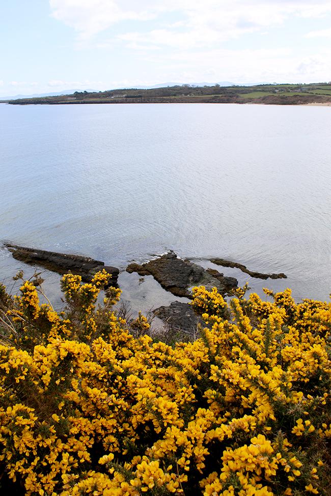 Lligwy Beach, Anglesey, Wales