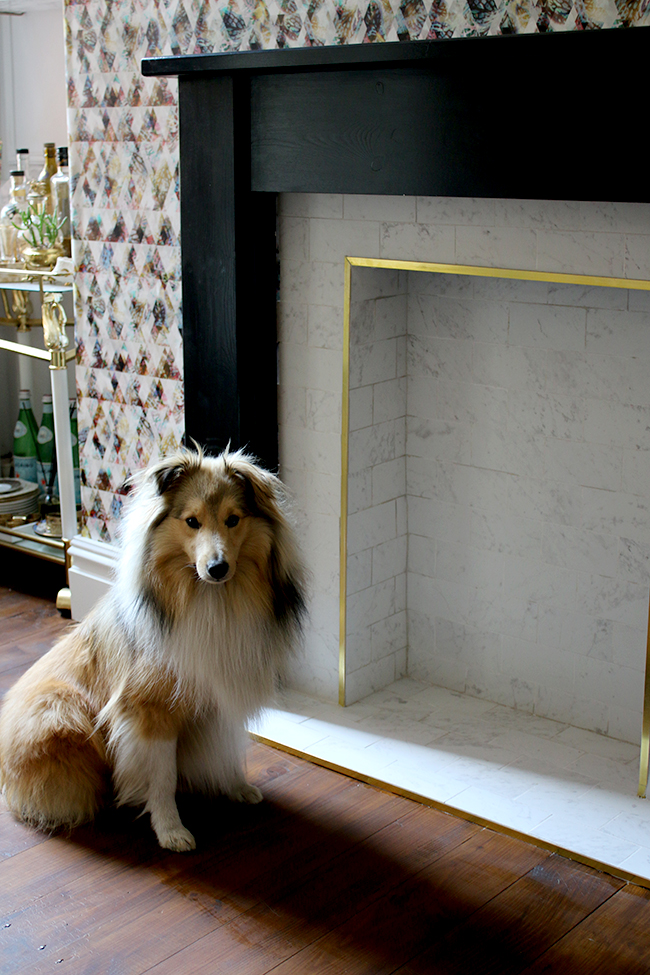 marble tile fireplace with brass trim and black hearth with graphic wallpaper modelled by a cute Sheltie - see the whole process on www.swoonworthy.co.uk