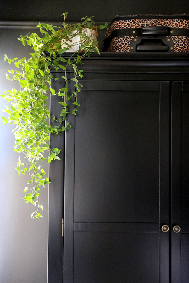 black wardrobe with hanging plant and leopard print luggage - see more on www.swoonworthy.co.uk
