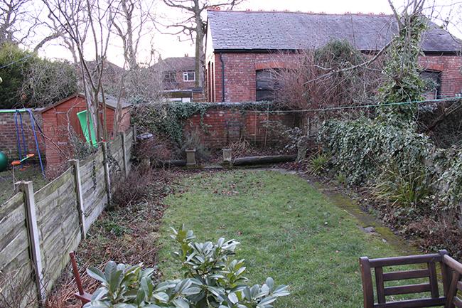 Back garden Jan 2011