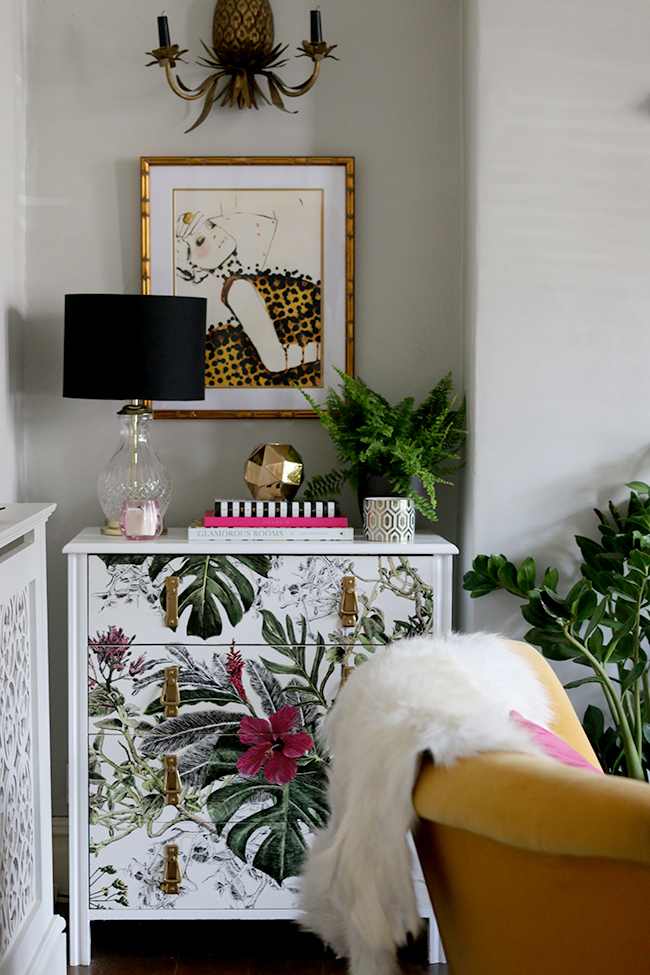 tropical wallpaper on chest of drawers