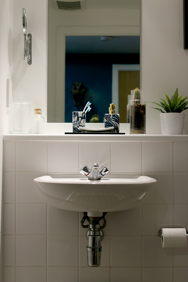 curious-apartment-bathroom-2