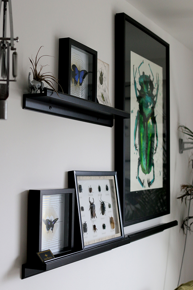 curious-apartment-gallery-wall