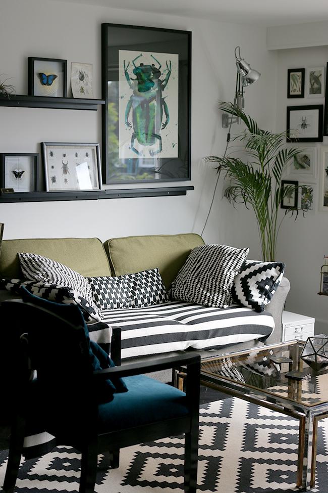curious-apartment-living-area-1