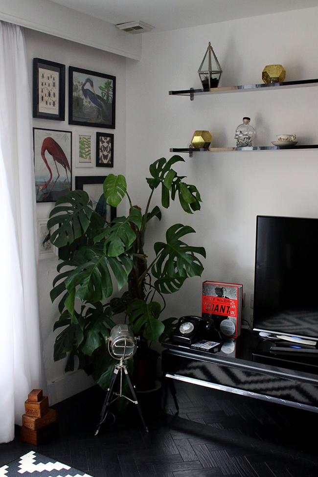 curious-apartment-living-area-2