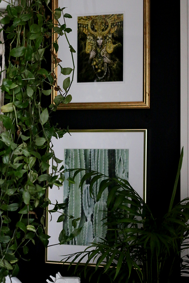 artwork with houseplants on black walls