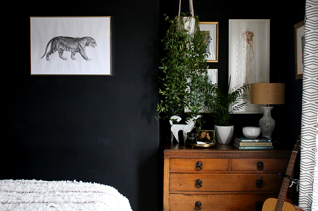vintage chest of drawers with gallery wall and hanging plant on black wall