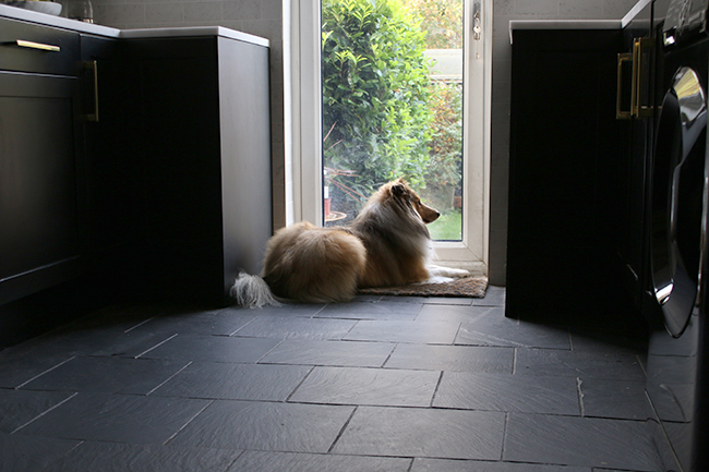black kitchen cabinets slate floor with dog in kitchen