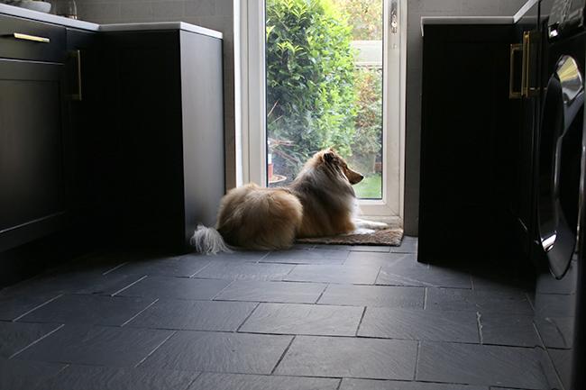 black kitchen cabinets slate floor with dog in kitchen