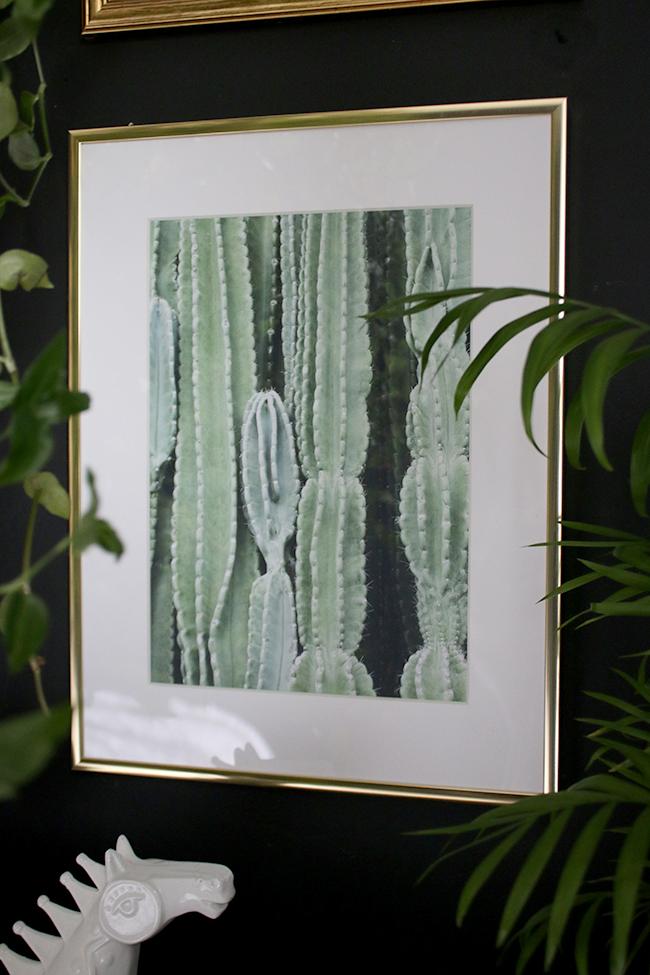 Desenio Art prints Cactus