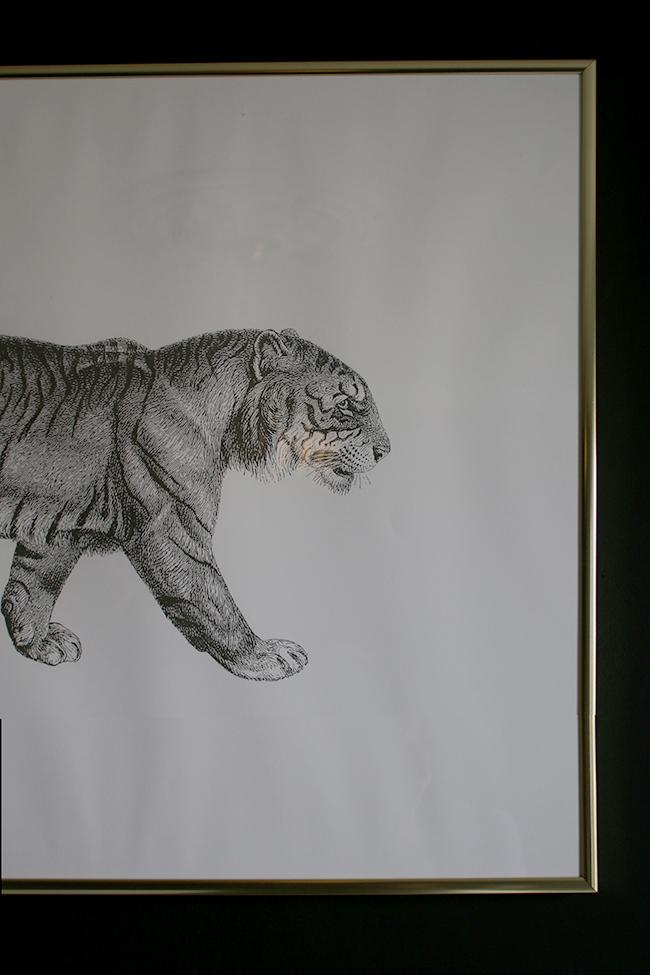 Desenio Art Print Tiger 50 x 70