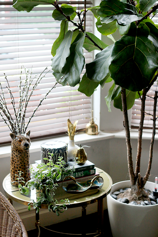 fiddle leaf fig with vintage brass and glass table and small table vignette styling