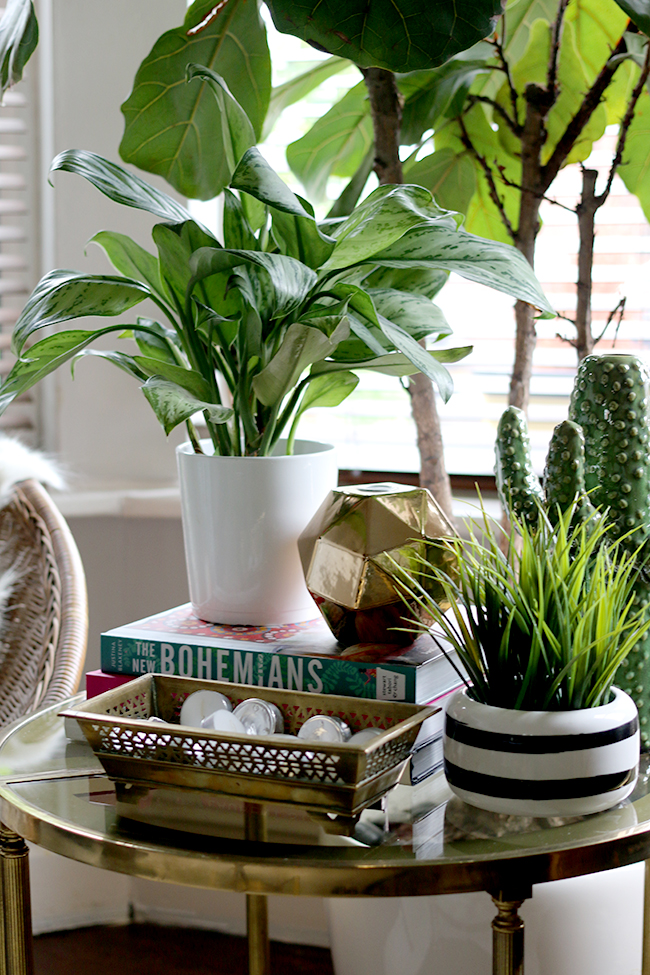 How to Style with Plants - styling in groups