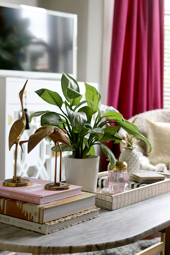 How to Style with Plants: Using Plants within a Vignette