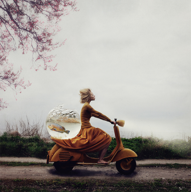 Kylli Sparre Rescue Operation