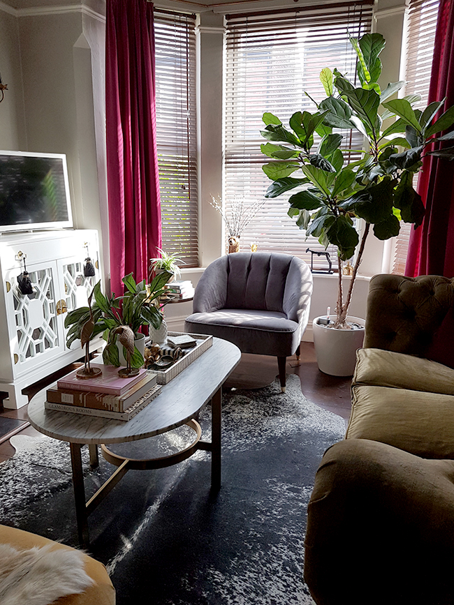 living room with cowhide rug and grey chair olive velvet sofa
