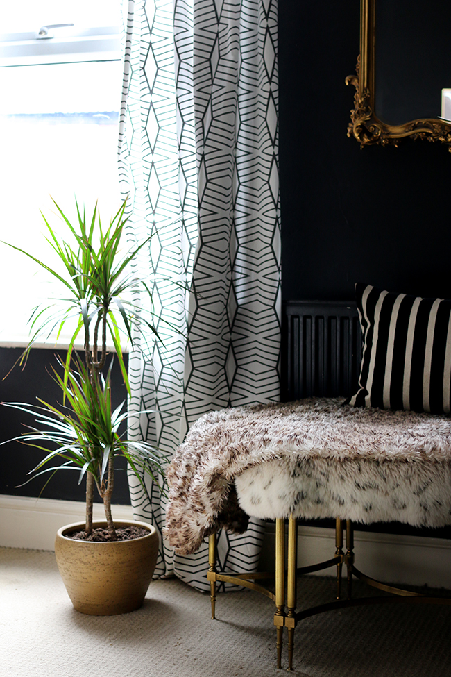 Dracaena marginata in black bedroom with gold accents