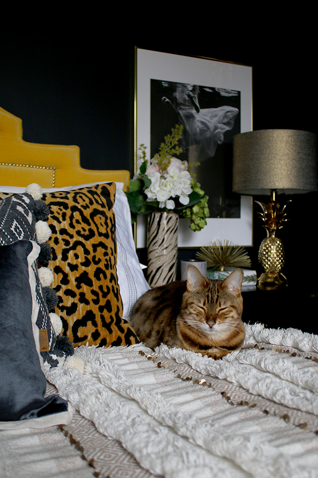 black bedroom with yellow velvet headboard leopard print cushions and gold pineapple lamp and bengal cat