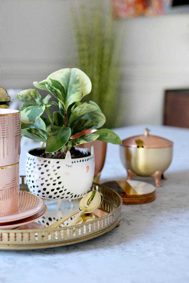 table top vignette with coffee cups and anthro planter