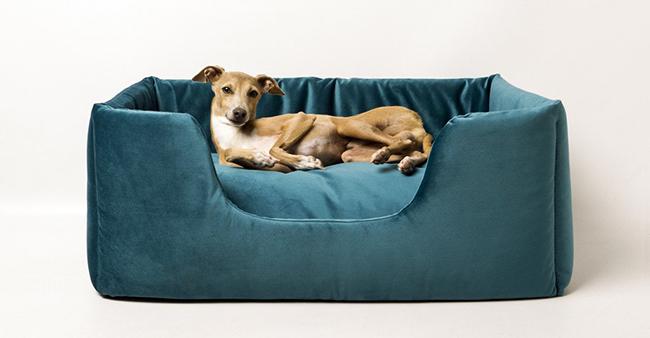 charley-chau-deeply-dishy-dog-bed-teal