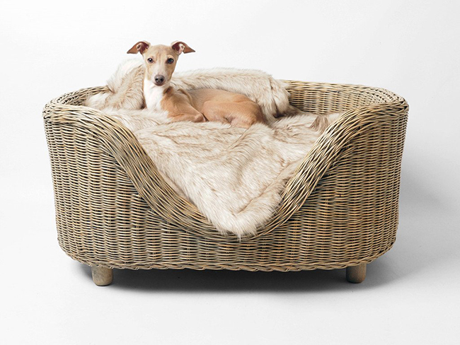 Oval Rattan pet Bed by Charley Chau