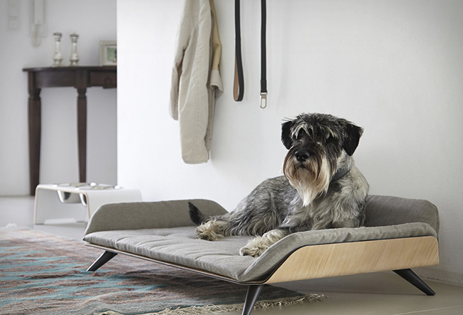 Letto cute pet bed